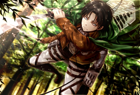 Shingeki no Kyojin - Boy, Eren Jaeger, Jaeger, Cant think of a fourth, Sword, Shingeki no Kyojin, Green, Eren, Forest