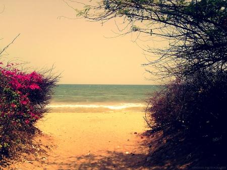 Romantic Beach View Beaches Amp Nature Background