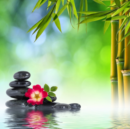 Relaxing Photography Abstract Background Wallpapers On