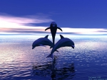 3 Dolphins Jumping out of the Water