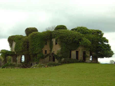 Lisheen in Ireland - haunting, ancient, green, ireland