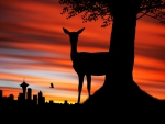 Deer Silhouette in the Sunset