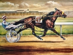 Pacing Standardbred - Horse 2