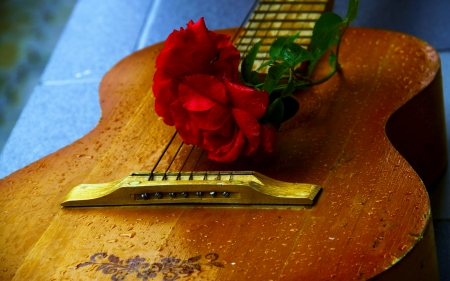 A GUITAR with LOVE - Flowers, photography, music, roses, guitars, mood
