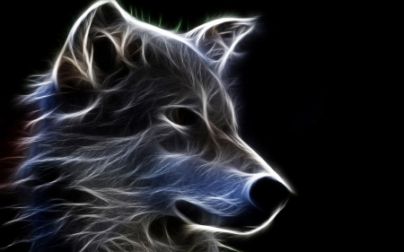 3d wolf  3D and CG  Abstract Background Wallpapers on Desktop Nexus Image 1466848