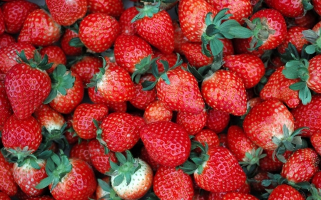 A World of Strawberries - Fruit, Healthy habits, Food, Nature, Stawberries
