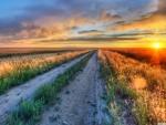 Long Road Montana