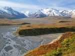 riverbed in denali national park in alaska