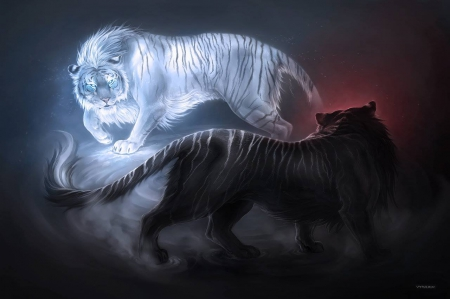 Fight Of Tigers Fantasy Abstract Background Wallpapers On