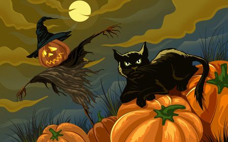 Black Cat and Scarecrow - night, scarecrow, pumpkins, black cat, full moon, halloween