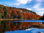 Amazing Vermont