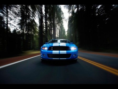 Ford mustang - mustang, hd, speed, ford, hq, road, blue