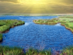 sunbeams over beautiful wetlands,