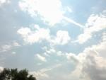 Bright Shiny Day