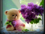 Teddy bear still life