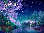 Night in Spring