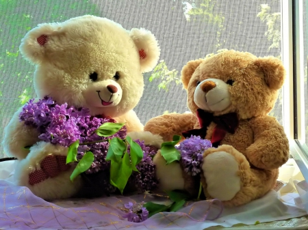 cute teddy bears with lilac other abstract background wallpapers