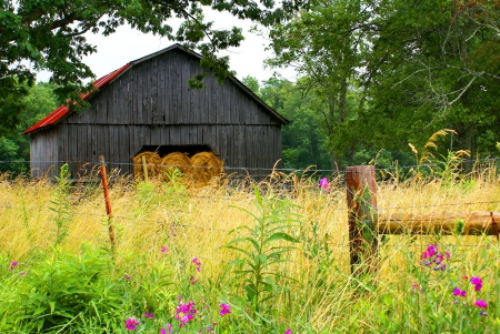 Wildflowers barn - grass, meadow, country, flowers, wooden, sky, wildflowers, nice, trees, nature, hut, lovely, beautiful, field, pretty, cottage, house, barn