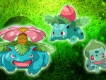 Pokemon grass starter