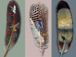 feather art work