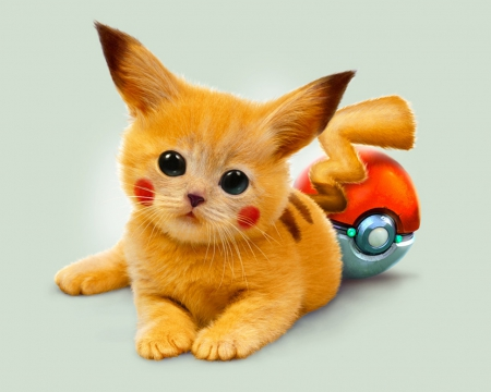 pikachu kitten pokemon anime background wallpapers on desktop