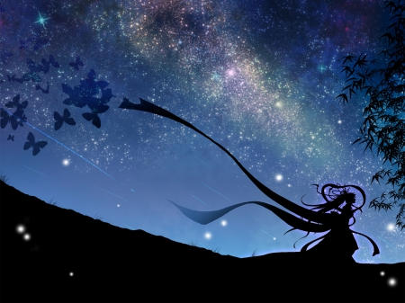 Starry sky - ancient, girl, butterflies, bamboo, starry sky