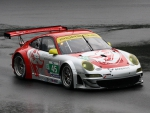 Flying lizard racing #45