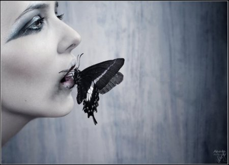 Venom - beauty, butterfly, white, venom, death, dark, gothic, black