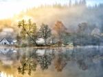 morning sun burning off the fog on a lake