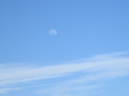 Day Moon - moon, clouds, day, blue