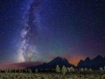 fabulous starry night