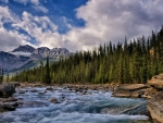 wonderful mistaya river in alberta canada