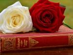 Shakespeare & roses
