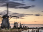 gorgeous windmills along a channel in kinderdijk holland