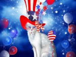 ✫Cat in Patriotic Hat✫