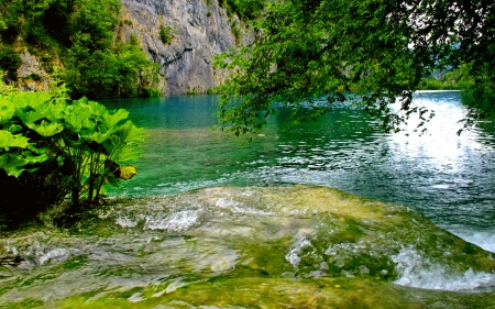Amazing nature - emerald, lake, pertty, amazing, rocks, water, nice, trees, nature, reflection, lovely, greenery, beautiful, cliffs, river, stones, green, bushes, shore, leaves