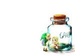 Zelda in the Jar
