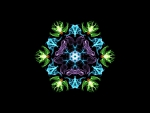 Silk Collection : 25 - Colorful Snowflake