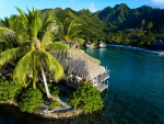 Moorea Island French Polynesia South Pacific