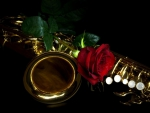 A SAX AND A ROSE