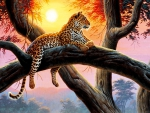 Cheetah on Tree