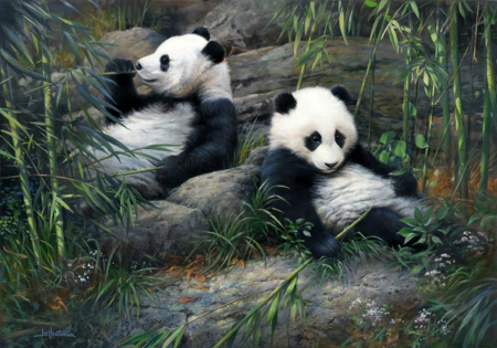 Lovely Pandas - painting, wildlife, bears, bamboo