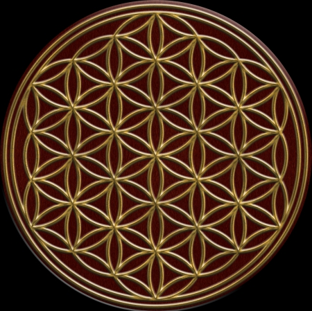 Flower of Life - seed, tree, life, nature, Flower