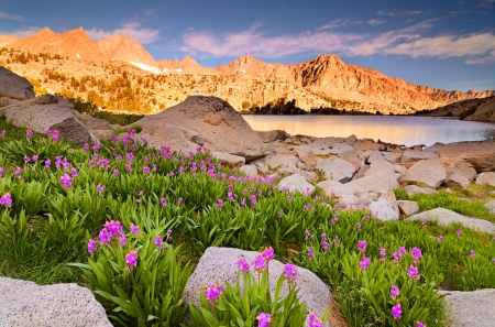 Moonlight lake - rocks, amazing, glow, slopes, grass, sky, lake, mountain, stones, cliffs, summer, peaks, flowers, moonlight, nature, reflection