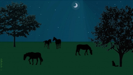 A Peaceful Pasture - m00n, moon, green, kitty cat, blue, night, stars, kitty, silhouettes, black, cat, fe1ines, silhouette, horses, nighttime, pasture, nightime