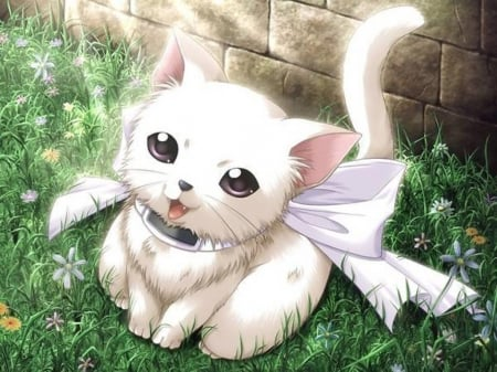 Cute Kitty Other Anime Background Wallpapers On Desktop Nexus Image 1499845