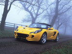 Yelllow Lotus Elise in the Woods