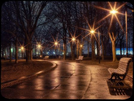 Rainy evening - park bench, benches, street lights, bench, lens flare, evening, lights, rainy