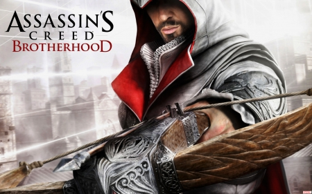 Assassins Creed Brotherhood - hyder ali, games, creed, assassins creed brotherhood, video games, assassins, hyder ali arbab