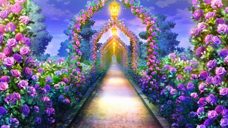 Rose Path   Beauty, Garden, Lovely, Walkway, Sweet, Plant, 3d